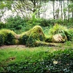 Moss maiden Helligan 150