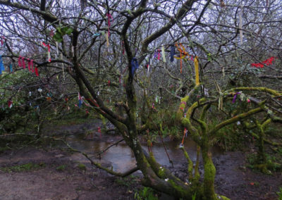 Clootie tree, Madron well