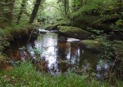 River pools, Huelgoat, Brittany