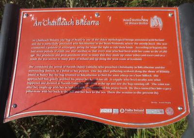 An Chailleach Bhéarra: the official story