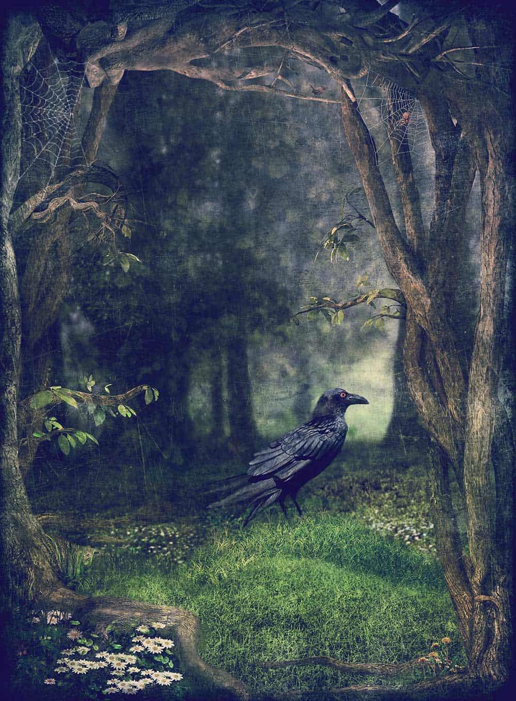 Samhain and the ancestors